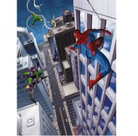 Fototapeta 4-433 p Spiderman
